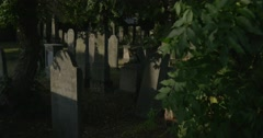 Old Tombstones at The Cemetery Panorama Behind Leaves Zoom Out Burial Place Stock Footage