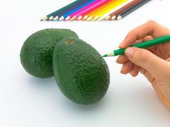 Drawing Avocado Stock Photos