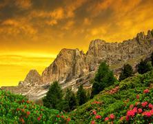 Dolomite peaks, Rosengarten at sunset - stock photo
