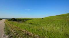 Kansas Flint Hills cows 4 Stock Footage