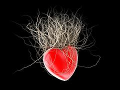 Brown's roots grew out of a red heart, in a black background. Stock Illustration