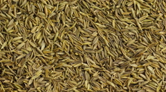 Stock Video Footage of Cumin seeds.
