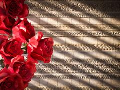 red roses on ancient wall decorative concept background - stock photo