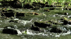 River flow over stones (1). - stock footage