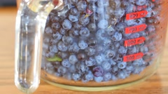 A jar of fresh picked wild blueberries tilting shot Stock Footage