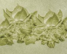 Nature Grunge Background - stock illustration
