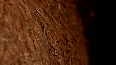 Side of coconut isolated on black, rotation Stock Footage