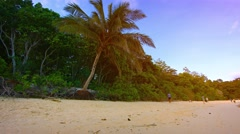 Natural Tree Line along an Undeveloped Tropical Beach Stock Footage