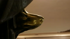 If you rub the nose of the statue of the dog - the desire to be fulfilled. Stock Footage