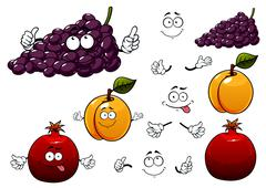 Grape, apricot and pomegranate fruits Stock Illustration