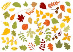 Maple, oak, birch, linden and herbs leaves - stock illustration