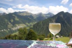 Wine and mountains Stock Photos