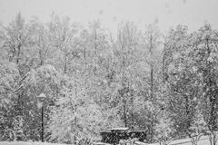 Heavy Snowfall - stock photo
