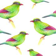 Watercolor seamless pattern with  birds. Stock Illustration