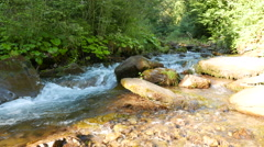 Beautiful  mountain stream   un sunny summer day.  Panorama  in 4K 3840x2160. - stock footage