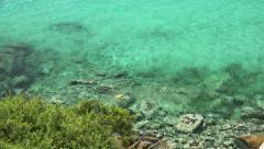 Great Barrier Reef in Queensland, Australia. Snorkeling Stock Footage