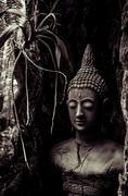 Stock Photo of Buddha idol in old tree for garden decoration
