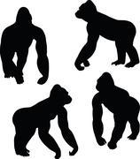 Gorilla silhouette Stock Illustration
