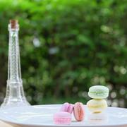 Lovely pastel colors Macarons on white plate and mini Eiffle tower with green Stock Photos