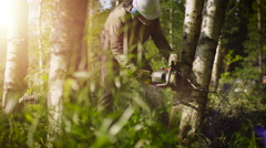 Lumberjack is Felling Tree with Chainsaw Stock Footage