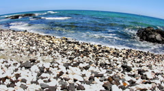 Tropical beach in Kona Hawaii - stock footage