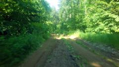 Driving car on a deserted forest road. - stock footage