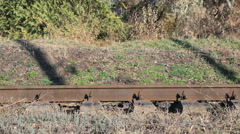 Train arriving - stock footage