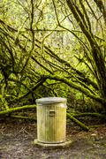 Garbage can in mossy forest Stock Photos