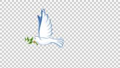 Dove of PeaceAnimation with alpha Stock Footage