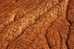 Close up of cracked desert earth on hillside Stock Photos