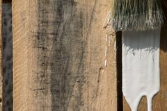 Closeup Of Pine Plank Being Painted In White Color - stock photo