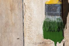Closeup Of Pine Plank Being Painted In Green Color Stock Photos