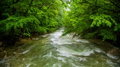 Calm Mountain River Flowing Down Among Greenery In Forest - stock footage
