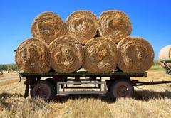 hay bales on a trailer - stock photo