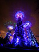 Bold Blue Lights from the Towers of Gardens by the Bay in Singapore - stock photo