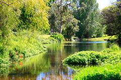 Amazing sunny scenery with water and greenery. - stock photo