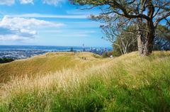 Top pf the Mount Eden volcano in Auckland. - stock photo