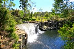 Beautiful waterfall with greenery in New Zealand. Stock Photos