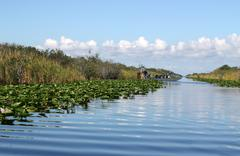 Airboat in Everglades - stock photo