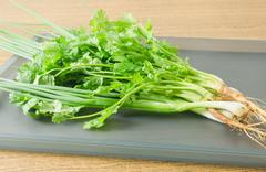Vegetable and Herb, Bunch of Parsley, Chinese Parsley or Coriander and Scalli Stock Photos