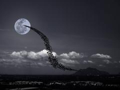 Bats, full moon and mountains Kuvituskuvat