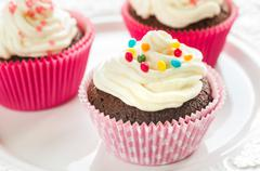 Colourful Chocolate Cupcakes - stock photo