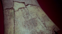 oracle, oracle bones from Yin Ruins - stock footage