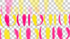 Pink yellow Feathers falling- Animation with alpha  Stock Footage