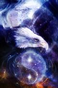 eagle on abstract background and Yin Yang Symbol in space with stars. Wings to - stock illustration