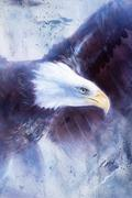 Painting eagle on abstract background, wings to fly, USA Symbols Freedom Piirros