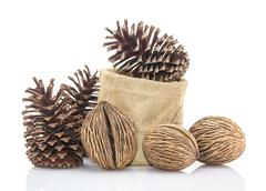 Othalanga - Suicide tree seed and cedar pine cone in sacks fodder - stock photo