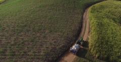 Aerial footage of tractor in Sugar Cane field 2 Stock Footage