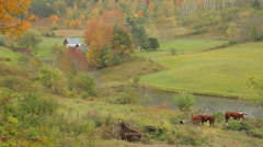 Idyllic New England rural scene in Autumn - stock footage