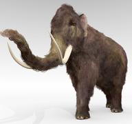 Wooly Mammoth - stock illustration